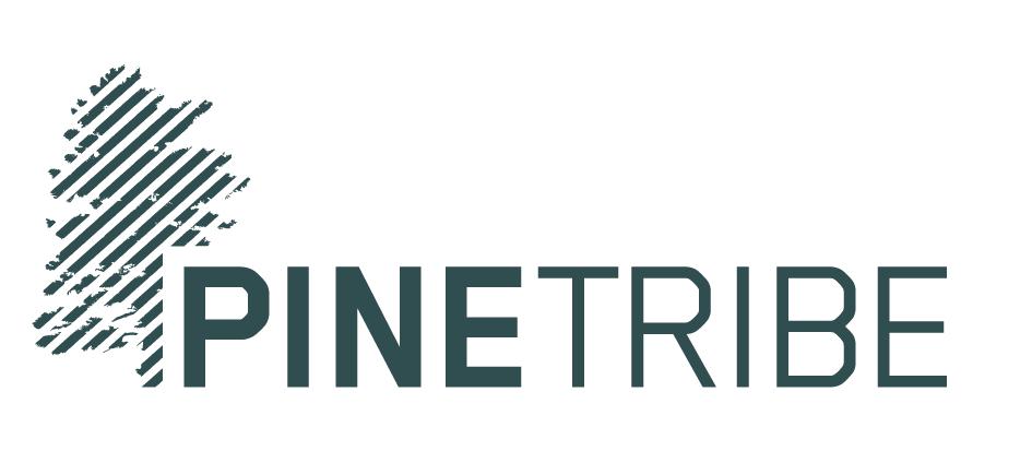 Pine Tribe brand design website